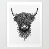 Medium highland cattle 2mv prints