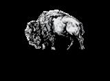 Medium medium ultra.ex.wildcanyon.logo.stacked 01